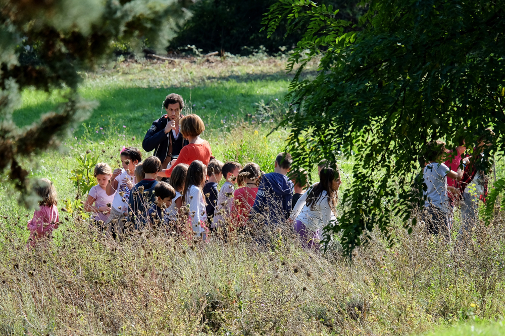 Una classe nell'orto della scuola primaria Longhena di Bologna, anno scolastico 2015-2016. - Fabio Campo